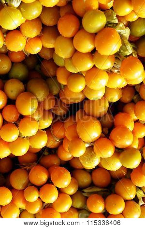 Rasbhari Or Cape Gooseberries