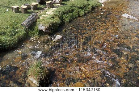 Small fast mountain creek in the forest