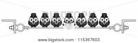 Businessmen birds