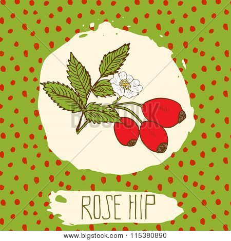 Dogrose Hand Drawn Sketched Fruit With Leaf On Background With Dots Pattern. Doodle Vector Rose Hip