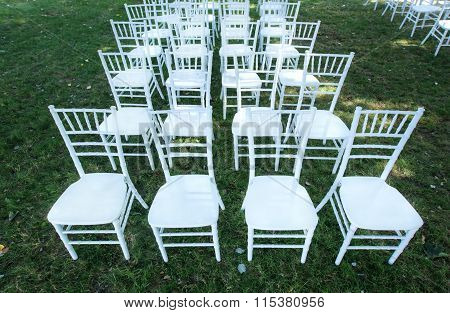 White wedding chairs on a green lawn, without decoration.