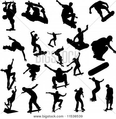 Skateboarding Collection vector