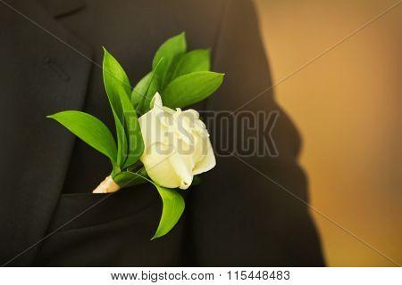 Buttonhole on a wedding suit