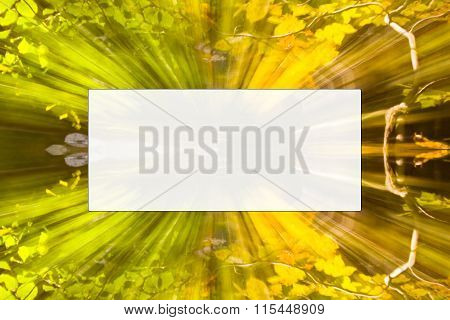 Natural background with frame