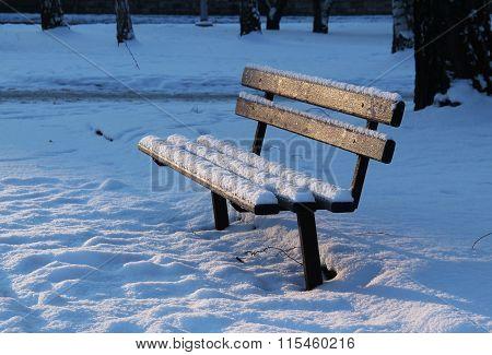 bench in winter