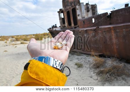 Hand with seashells on a background of ship in the desert
