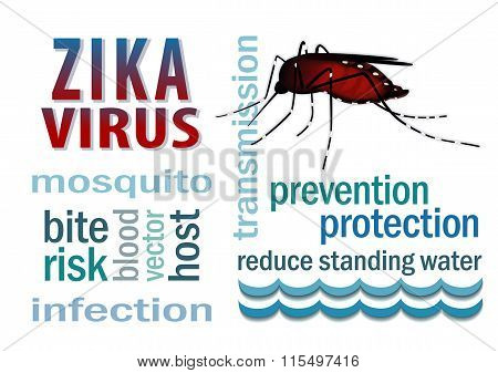 Zika Virus Mosquito, Standing Water, Word Cloud