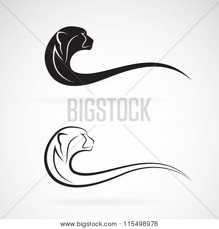 Vector Image Of An Cheetah Design On White Background