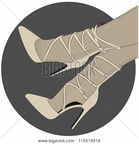 laceup shoes heels illustration