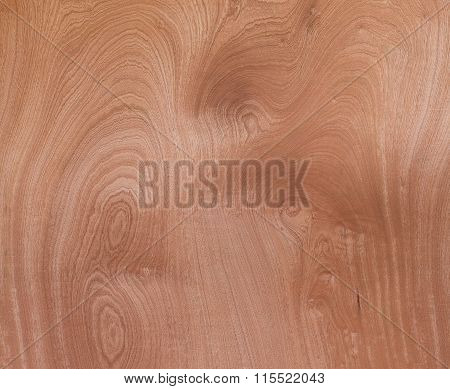 Wood Texture Veneer Abstract Natural Grain Pattern For Background Image