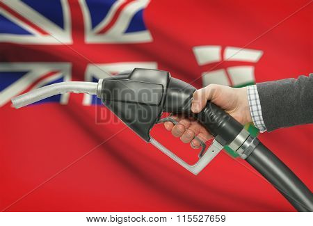 Fuel Pump Nozzle In Hand With Canadian Provinces Flags On Background - Ontario