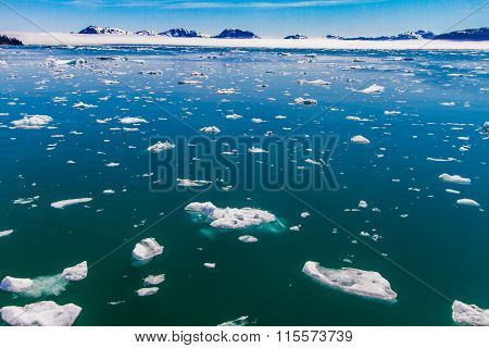 Icebergs in calm water