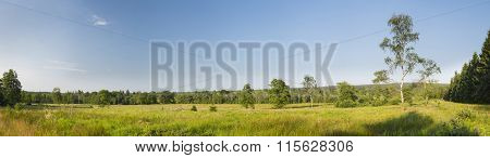 Landscape Panorama In The High Fens, Belgium