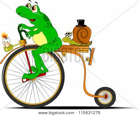 Frog And Snail On A Bicycle