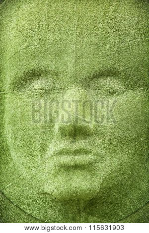 The Grass Wall In Shape Of Woman Face