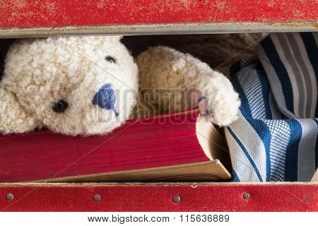 In the Suitcase