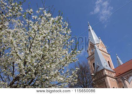 Classical Catholic Church, Ukraine, Mukachevo