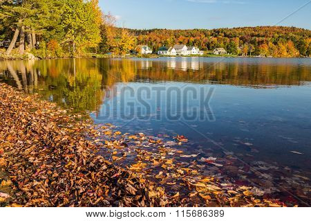 fall landscape in Elmore State Park In Autumn