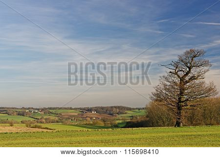 Stour Valley,uk, In Winter