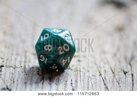 Twenty sided dice used for various board games