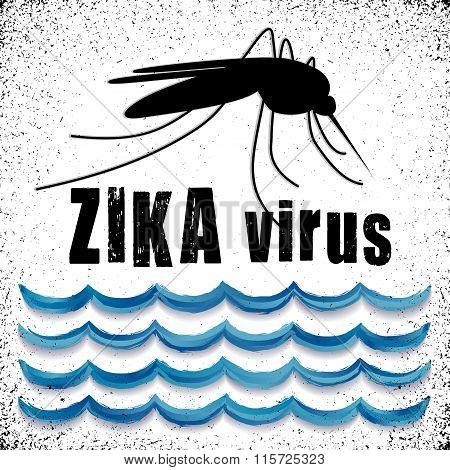 Zika Virus Mosquito, Standing Water