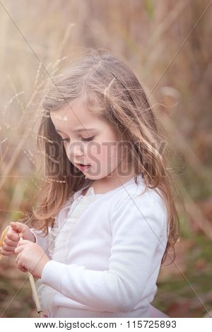 Beautiful little girl picking a dry weed and looking down