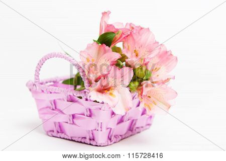 Bouquet Of Pink Flowers Alstroemeria In Basket
