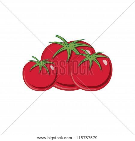 Red Ripe Tomatoes Vector Illustration Isolated On White Backgroud