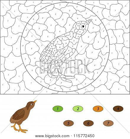 Cartoon Poult. Color By Number Educational Game For Kids. Vector Illustration