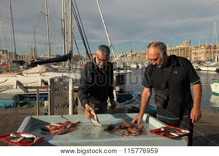France, Marseille -november 19, 2015.:selling Fish At The Fish Market Of Old Port Of Marseille (vieu