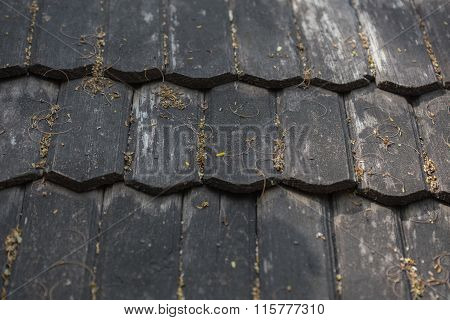 Ancient Wooden Roof