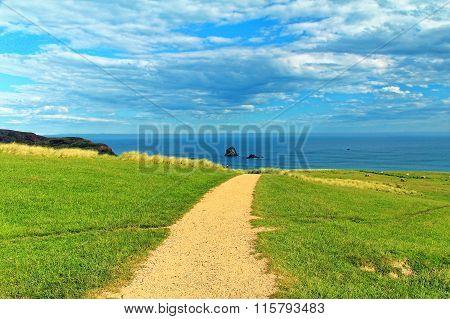 Coastal view, Pacific coast of New Zealand, Otago Peninsula