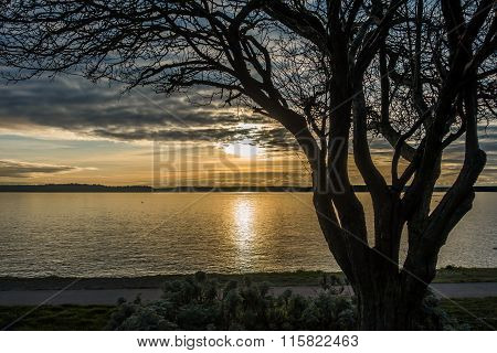 Yellow Sunset Over Puget Sound 2