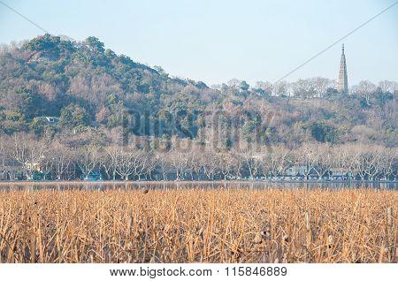 Baochu Pagoda Seen Across A Wintery West Lake, Hangzhou