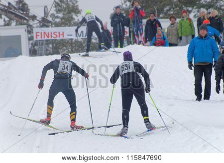STOCKHOLM - JAN 24 2016: Duel between two cross country skiing people sprinting in a uphill a few meters before the finish line at the Stockholm Ski Marathon event January 24 2016 in Stockholm Sweden