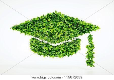 Eco Education Symbol