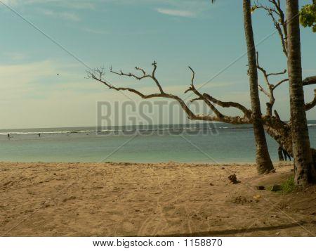 Scene Of A Lovely Beach On A Sunny Day