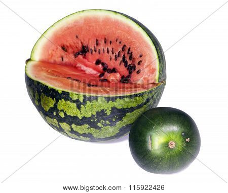 Two water-melons of various grades - big and dwarfishsmall depth of sharpness focus on a crust of a
