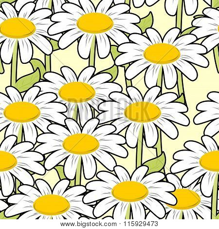 Chamomile Seamless Pattern. Beautiful Flowers Ornament. Summer Meadow Ornament. Texture To Fabric. L