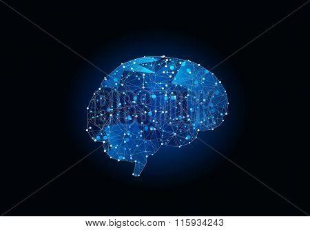Digital human brain