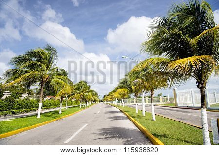Cozumel Mexico Highway