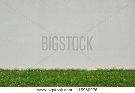 White Plastered Stucco Wall Background with Grass