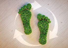 Green Footprint Concept