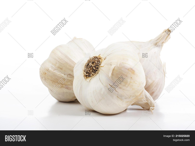 Garlics Studio  Garlic Image & Photo (Free Trial) | Bigstock