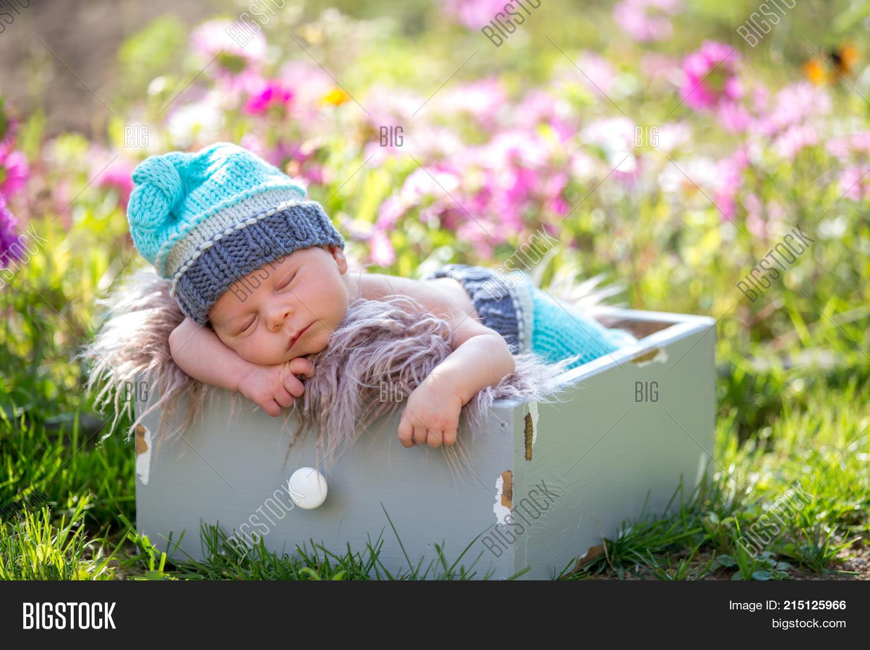 1ee5516b007 Cute newborn baby boy sleeping peacefully in basket in flower garden