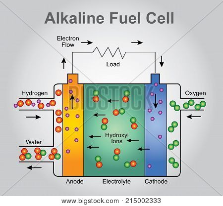 The alkaline fuel cell also known as the Bacon fuel cell after its British inventor Francis Thomas Bacon is one of the most developed fuel cell technologies. Illustration process.