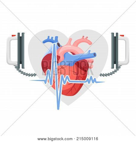 Human heart, modern electric defibrillator and small section of cordiagram in form of emblem isolated cartoon flat vector illustration on white background.