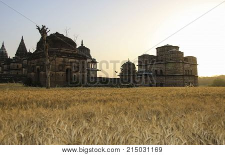 Royal cenotaphs of Orchha. Orchha Madhya Pradesh India
