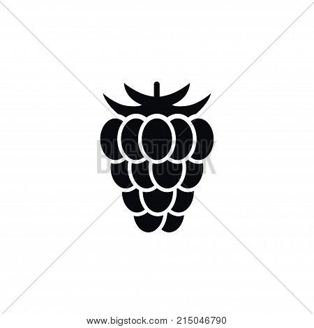 Berry  Vector Element Can Be Used For Razz, Raspberry, Berry Design Concept.  Isolated Shrubby Plant Icon.