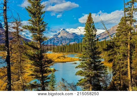 Warm September in the mountains of Canada. On the shores of the Abraham lake there are autumn multicolored forests. Concept of ecological and active tourism